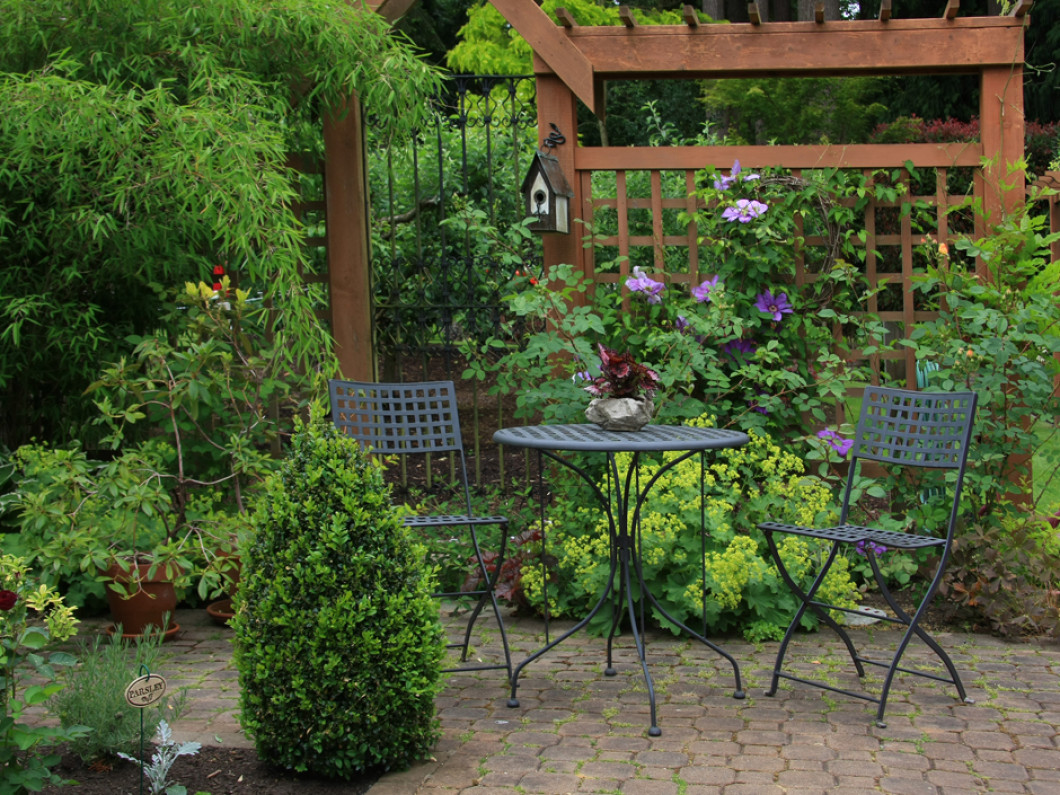 Add Natural Shade to Your Yard With Shrubs and Trees